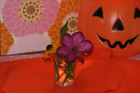 Romantic Halloween Poems Spooky Fun Images Of Halloween U0026 A Cauldron Of Poems U201cbeware