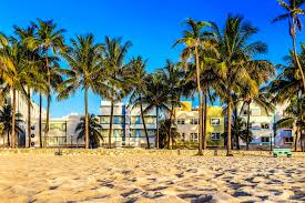miami holiday 1 week incl direct flights u0026 hotel only u20ac696pp