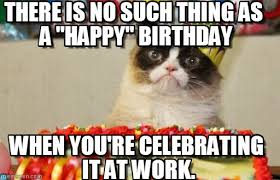 Funny Cat Birthday Meme - funny happy birthday meme google search grumpy cat pinterest