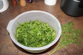 cuisiner les fanes de carottes veloute de fanes de carottes evaliya cuisine