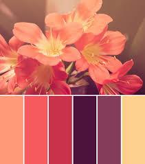 Pink Color Scheme Best 25 Purple Color Schemes Ideas On Pinterest Purple Palette