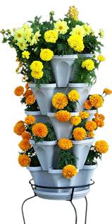 Vertical Garden Vegetables by Amazon Com 5 Tier Stackable Strawberry Herb Flower And