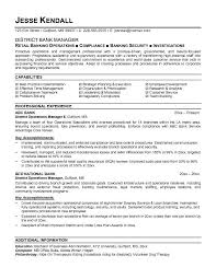 example district bank manager resume free sample
