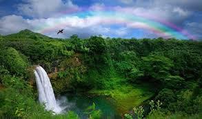 Hawaii waterfalls images The 5 most beautiful hawaiian waterfalls live your aloha hawaii jpg