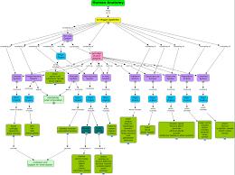 endocrine system concept map human anatomy riedl whittington