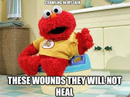 Crawling In My Skin Meme - crawling in my skin these wounds they will not heal ppotty elmo