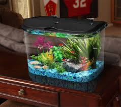 How To Make Fish Tank Decorations At Home Amazon Com Api Panaview Aquarium Kit With Led Lighting And Power