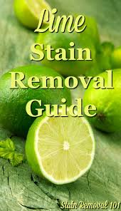 Mayonnaise Stain Removal Guide Mayonnaise Upholstery And Household How To Remove Lime Stains Upholstery Limes And Household