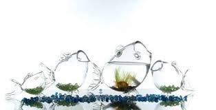 glass fish shaped fish bowls excellent centerpieces