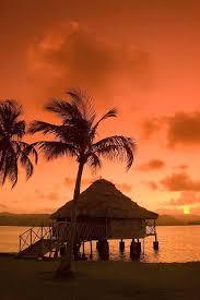 Tiki Hut Austin Sunset Tiki Hut Silhouette Sunsets Pinterest Tiki Hut