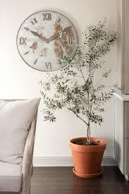 plants of season 4 joanna gaines shares her fixer upper secret