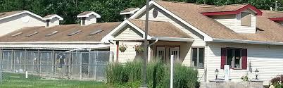 Center For Home Design Franklin Nj Pet Spa Pet Facility Franklin Nj