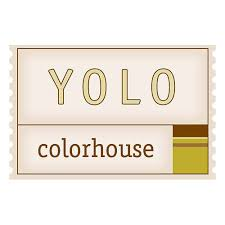 yolo colorhouse paint green store