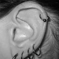 piercing ureche piercing online