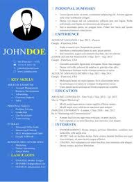 buy resume template buy resume template paso evolist co