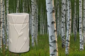 cremation tree memorial trees japanese white birch memorial tree urn cremation