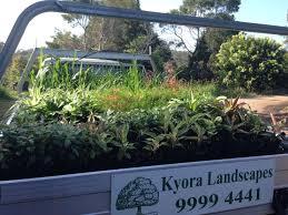 low maintenance top 10 low maintenance plants kyora landscapes blog