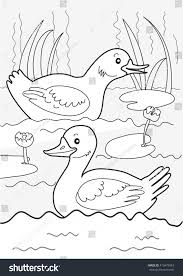 ducks on pond two ducks swimming stock vector 413479543 shutterstock