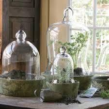 park hill glass bell jars sj1827