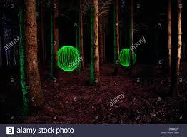 Fairy Light Tree by Light Light Orbs Fairy Lights Trees Woods Stock Photo Royalty