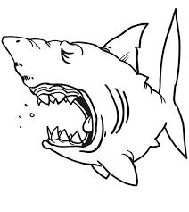 free shark coloring pages printable coloring pages clip art