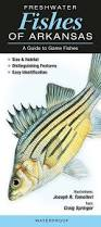 Freshwater Fish Freshwater Fishes Of Arkansas U2013 Quick Reference Publishing