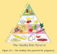 nutrition during pregnancy u2014eating right for two