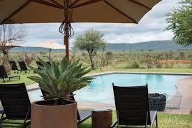 luxury african safari at madikwe safari lodge vagrants of the