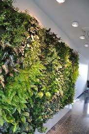 Interior Plant Wall Aveda Shop Green Wall Vertical Garden Aveda The Emquartier