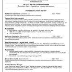 top professionals resume templates amp samples professional resume