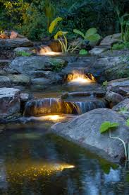 Aquascape Ponds Light Up Your Night Backyard Lights And Garden Ponds