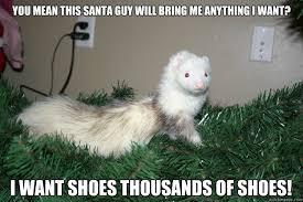Ferret Meme - surprised ferret memes quickmeme