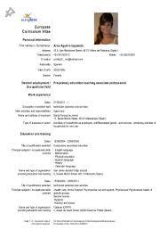 Professional Skills On Resume Level Of Language Skills In Resume Free Resume Example And