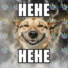 Hehe Meme - stoner dog memes create meme