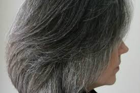 transitioning to gray hair with lowlights destination gray first steps to transitioning revolution gray