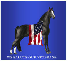 Horse With American Flag All American Walking Horse Alliance Home Facebook
