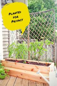 How To Build A Wood Patio by Diy Patio Privacy Screens Backyard Patio Ideas
