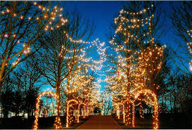 8 dazzling christmas light displays cincinnati holiday light shows