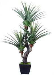 Plant For Bedroom Artificial Plant Target For Bedroom Home Decor Pinterest