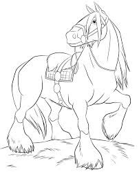 realistic horse drawings to color