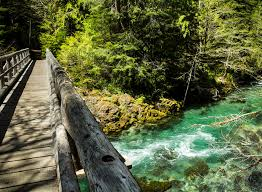 Oregon Wild Swimming images 16 incredible swimming holes in portland to hit this summer jpg