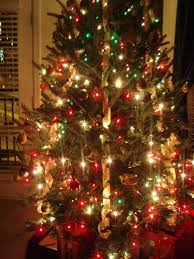 How To Decorate A Home For Christmas Indoor Christmas Tree Photo Album Home Design Ideas Images Of
