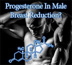 what gets rid of dht in body progesterone the missing link in man boob reduction chest sculpting