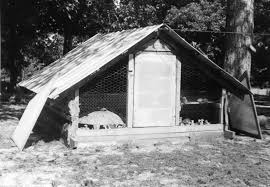 Shed Style Roof by Historic Hen Brooder Houses Shed Style Roof Esp 1930 U0027s U0026 1940 U0027s