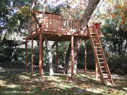 tree platform designs los angeles wood tree houses playhouses