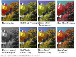 Blue Green Color Blindness Visual Impairments