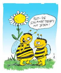 bienen sprüche bienen witze bienen sprüche bienen weisheiten