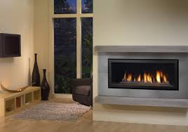 Regency Gas Fireplace Inserts by Regency Horizon Hz40 Modern Gas Fireplace Contemporary Living