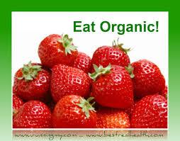 20 best healthy tips for good eating u2014 best real health pat moon