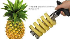 10 kitchen appliances everyone should have list of top ten